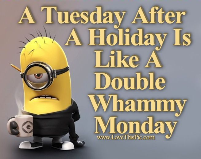 175681-A-Tuesday-After-A-Holiday-Is-Like-A-Double-Whammy-Monday