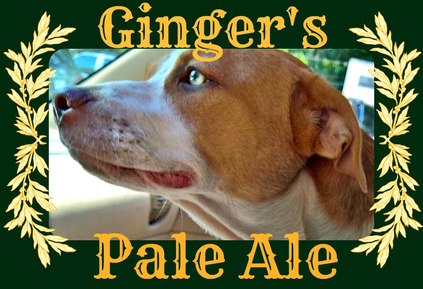 Gingers Pale Ale Label